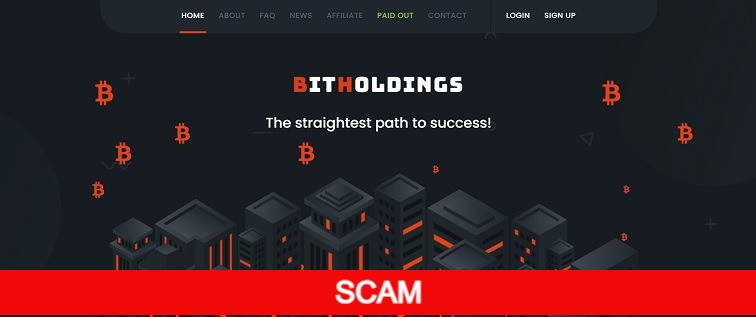bitholdings.biz new hyip site review