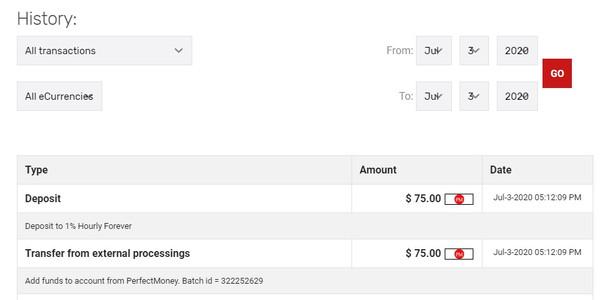 hourlyking.com investment details