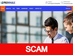Prowhale.global Review (SCAM): 3% - 4% daily forever