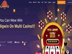 Multi-casino.vip Review : 0.25% profit return every hour