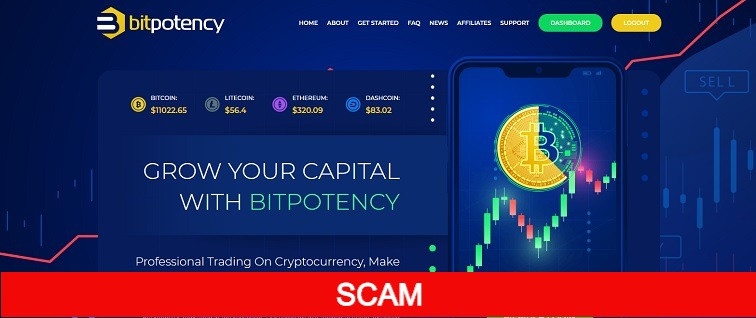 bitpotency.com new hyip site