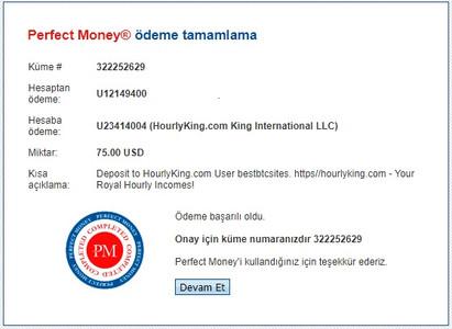 hourlyking.com new hyip site investment