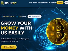 Richiebit.biz Review : New hyip site 10% - 25% daily for lifetime