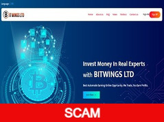 Bitwings.top Review (SCAM) : 4% - 6% daily forever
