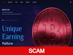 Biselo.top Review (SCAM) : Up to 20% daily for lifetime
