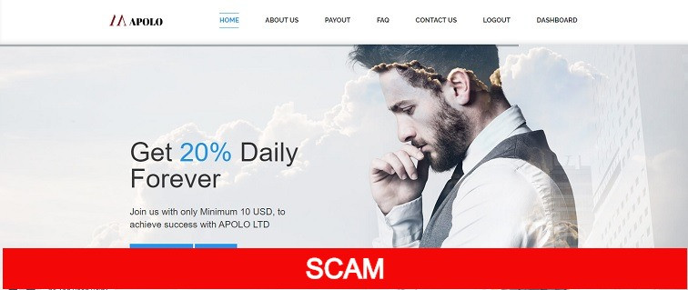 apolo.ltd new profitable hyip site