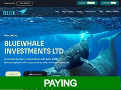 🥉Bluewhaleinv.com Review : Earn up to 20% daily income