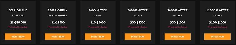 bigbux.biz investment plans