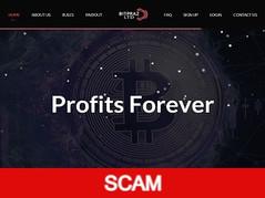 Bitpraz.com Review (SCAM) : 7% - 11% daily forever