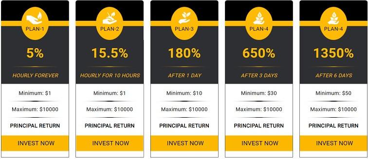 cryptokingdom.cc investment plans