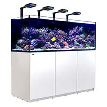 Red Sea Reefer XXL 750 Deluxe White