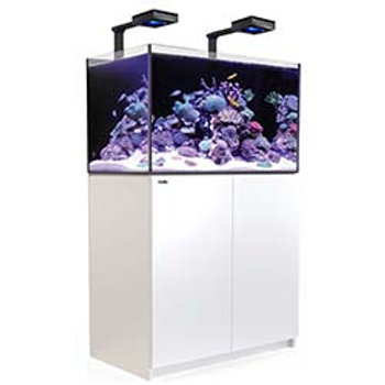 Red Sea Reefer 250 Deluxe White