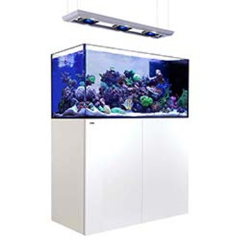 Red Sea Peninsula P500 Deluxe Complete System White