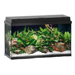 Juwel Primo 60 Aquarium
