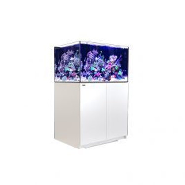 Red Sea Reefer XL 300 Aquarium ( White )