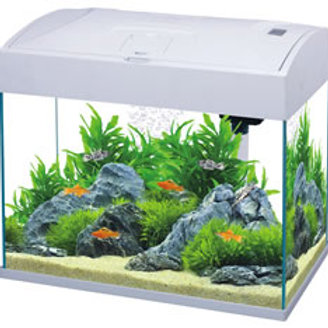 Fish R Fun FRF-370 White 20L Aquarium