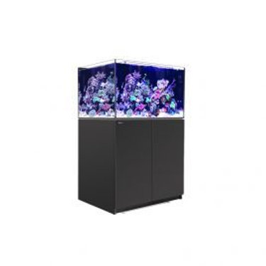 Red Sea Reefer XL 300 Aquarium ( Black )