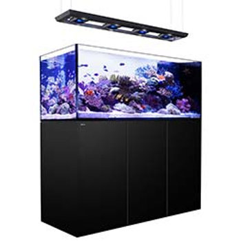 Red Sea Peninsula P650 Deluxe Complete System Black