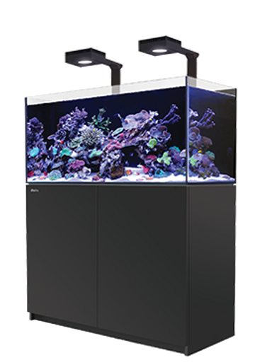 Red Sea Reefer 250 Deluxe Black
