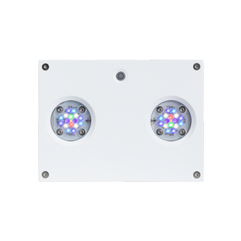 AI Hydra 32HD LED Light - White