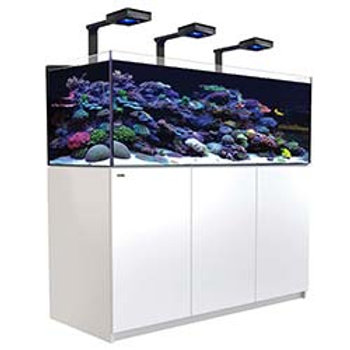 Red Sea Reefer XL 525 Deluxe White