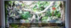 Aquariums and Reptile Terrariums cutom made & installed