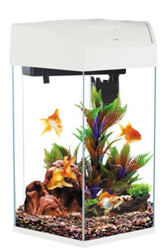 Fish R Fun FRF-555 White 21.6L Hexagonal Aquarium