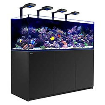 Red Sea Peninsula P500 Deluxe Complete System Black