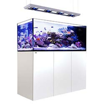 Red Sea Peninsula P650 Deluxe Complete System White