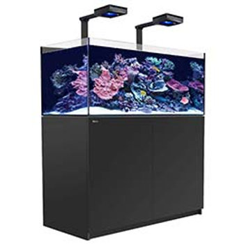 Red Sea Reefer 350 Deluxe Black