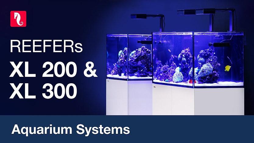 Red Sea Reefer Aquarium.  The perfect aquarium for keeping marine fish and corals.