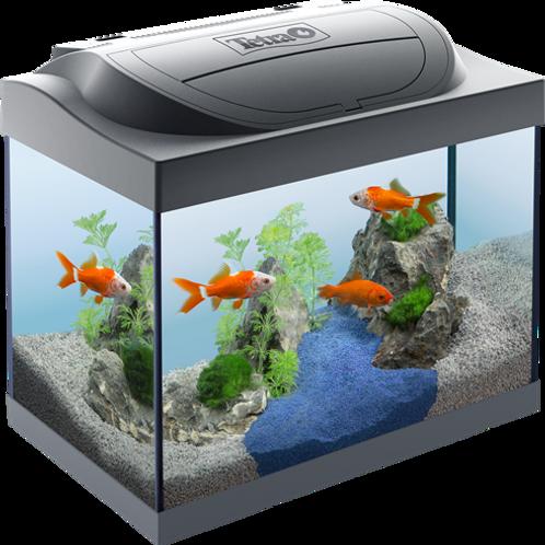 Tetra Starter Line Aquarium 30 Litres