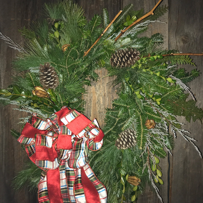 5 Landscape Plants for Holiday Decorating