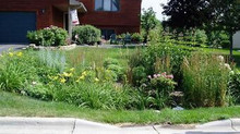 Rain Water Issues?     Why not a Rain Garden?