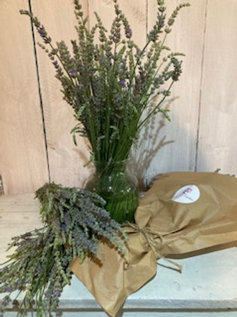 Fresh or Dried Lavender