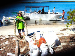 THE PIN Liz 2012