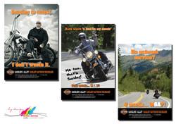 JW - Gasoline Alley Harley 2-3