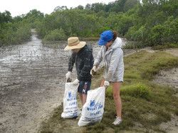 The Pin 2012 Bags and bags