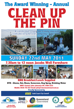Clean up the pin 2011 poster