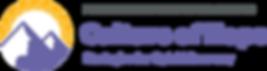 NJPN_Peer-Summit-2020_Logo-H@2x.png