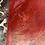 Thumbnail: Phoenix