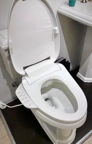 Kohler bidet seat