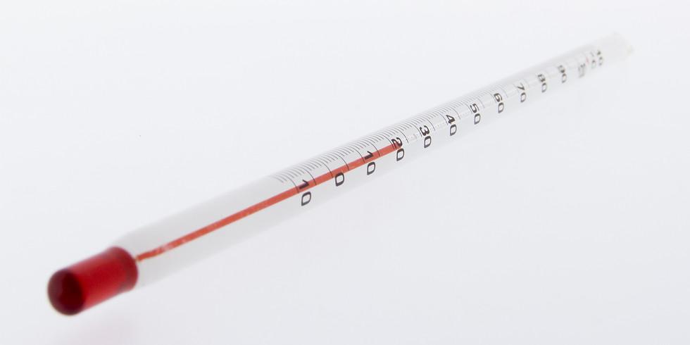 Temperature: From Mercury Columns to Degrees Kelvin