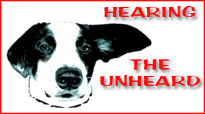 Hearing the Unheard