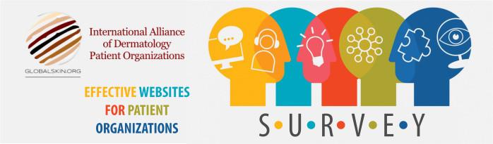 Effective Websites: Survey Header