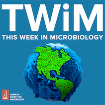 """Eun-ik and Anne's paper featured in ASM's """"This Week in Microbiology"""" podcast"""