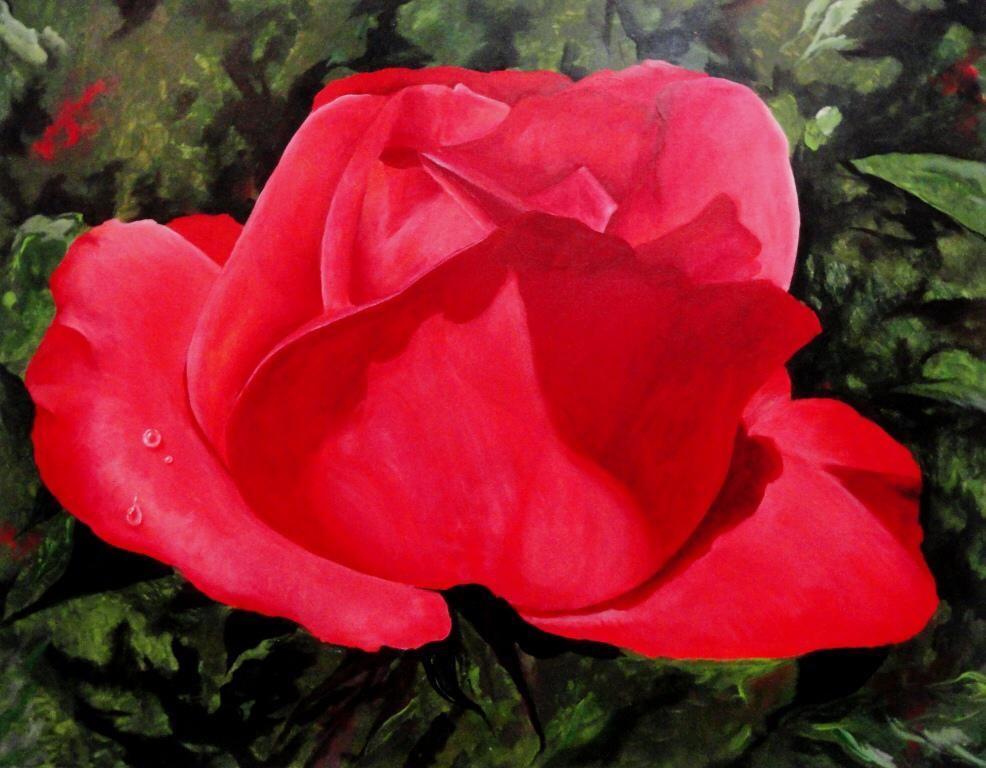 Ro Agria_ Rosa vermelha, acrylique sur t