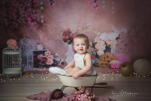 Little Girl in Wheel Barrow