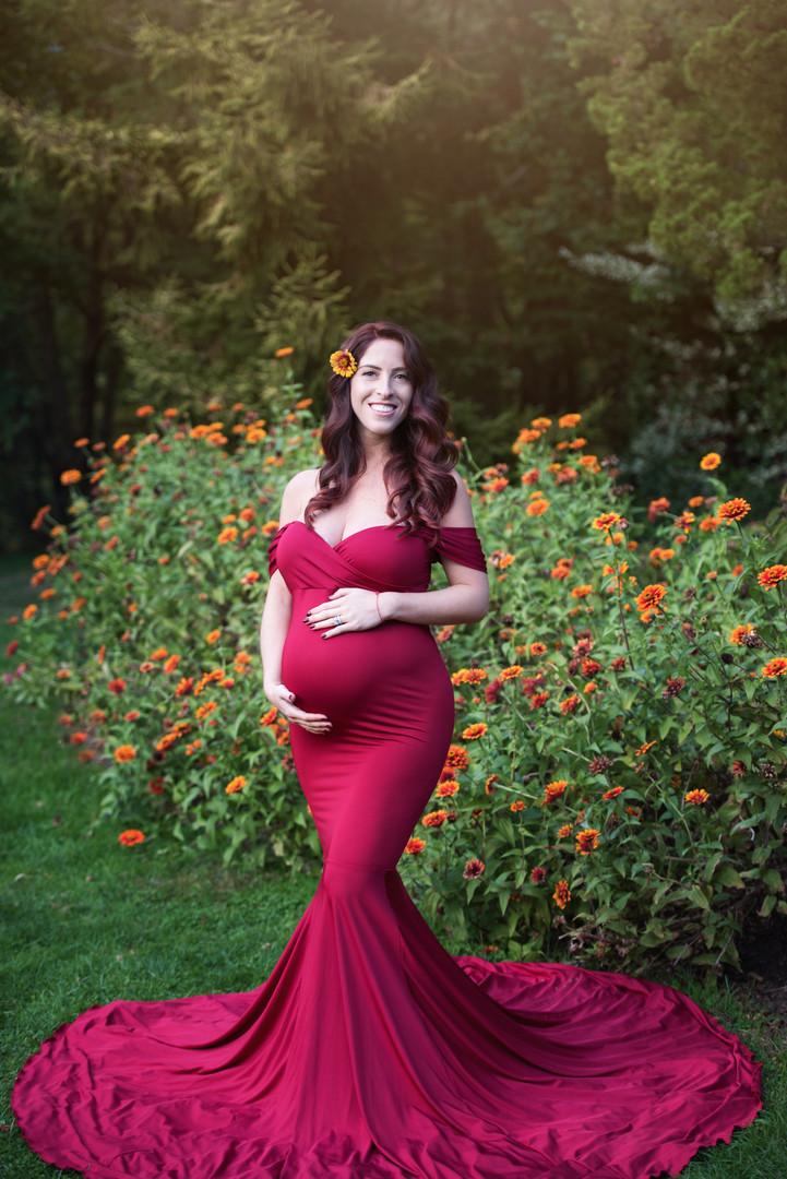 Garnet Athena Maternity Dress