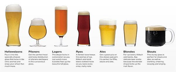 beer-glass-types.jpg